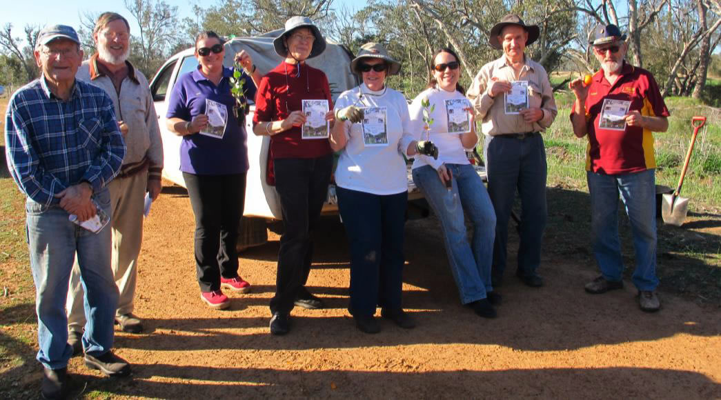 Moora plants for Carnaby's on National Tree Day