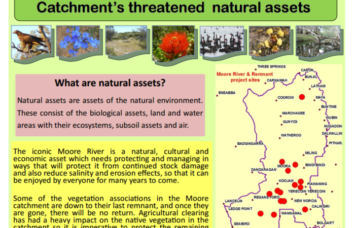 SNRMO 09047 - Recovery and Protection of Moore River Catchments Threatened Natural Assets