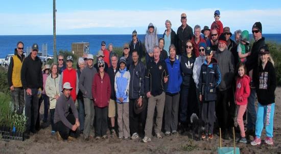 Community revegetate degraded tracks on Guilderton dunes